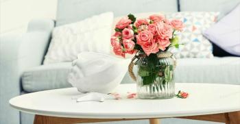 بهترین گلهای آپارتمانی برای دکوراسیون خانه + تصاویر