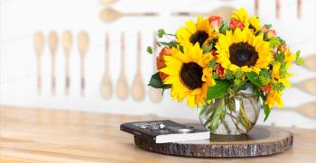 8 ترفند برای تقویت گلهای آپارتمانی